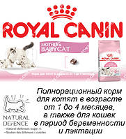 Сухой корм Royal Canin Mother & Babycat на развес