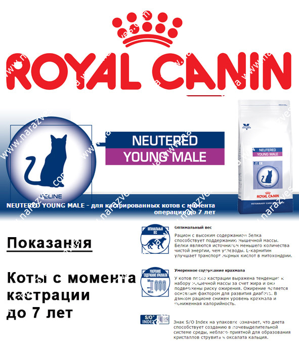 Сухой корм Royal Canin Young Male на развес