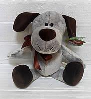Собака Бим