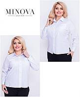 Классическая женская рубашка прямого кроя, коттон (S, M, L, XL, XXL, XXXL), фото 1