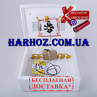 Инкубатор Теплуша ИБ-63 яйца автомат,вентилятор, тэн, влагомер,+ 12 вольт