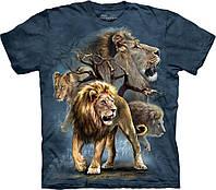 3D футболка мужская The Mountain р.S 46-48 RU футболки 3д (Львы)