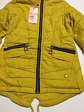 Куртка-парка для девочек 152 см, фото 2