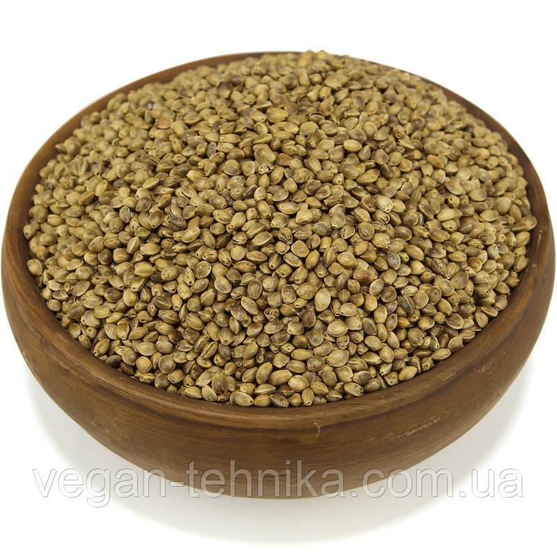 Конопля, семена конопли