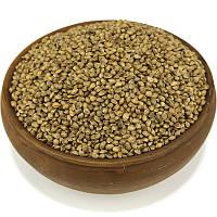 Конопля, семена конопли, фото 1