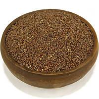Редька масличная, семена редьки