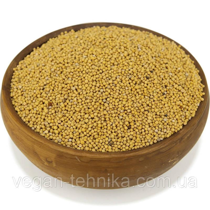 Горчица желтая, семена горчицы