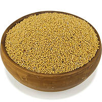 Горчица желтая, семена горчицы, фото 1