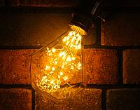 Светодиодная лампа Эдисона 3Вт D95 E27 DIP , фото 1
