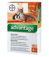 Капли на холку от блох для котов Bayer Advantage до 4 кг (Байер Адвантейдж 1 пипетка)