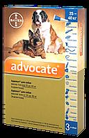 Капли от блох и глистов для собак Bayer Advocat Байер Адвокат 25-40 кг (1 пипетка)