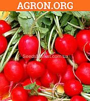 Рубин - Семена редиса