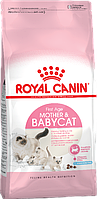 Корм для кошек и котят Royal Canin Mother&Babycat (Роял Канин Мазер энд бебикэт) 2 кг