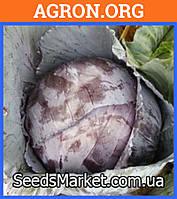Рескью F1 - Семена краснокочанной капусты