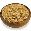 Спельта (полба), семена спельты