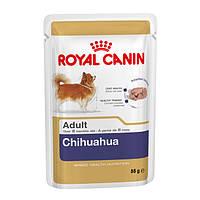 Корм для собак Royal Canin Chihuahua adult (Роял Канин Чихуахуа адалт) 85 г