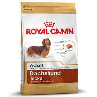 Корм для собак Royal Canin Dachshund adult (Роял Канин Такса адалт) 500 г