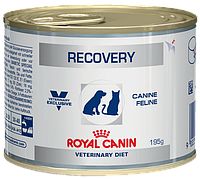 Корм для собак и кошек Royal Canine Recovery (Роял Канин Рекавери) 195 г