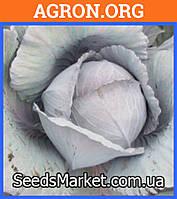 Ред харизма F1 - Семена краснокочанной капусты