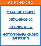 Ройал Форто - Семена моркови