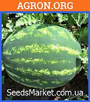 Атаман F1 - семена арбуза 1000 семян - Hazera (Израиль)