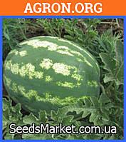 Арашан F1 - семена арбуза 100 семян - Syngenta (Швейцария)