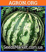 Астраханский - семена арбуза 100 грамм - Семко (Япония)