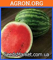 HSR 4655 F1 - семена арбуза