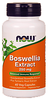 Экстракт босвеллии / NOW - Boswellia Extract 250mg (60 caps)