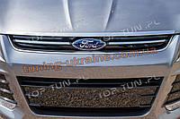 Накладка (листва) на капот для Ford Kuga 2013