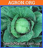 Рейма F1 - Семена белокочанной капусты