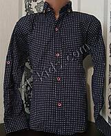 Стильная стрейчевая рубашка для мальчика 116-152 см (опт) (ТС03) (пр. Турция)