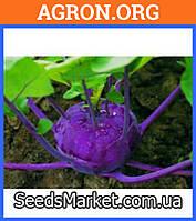Бланкит - семена капусты кольраби