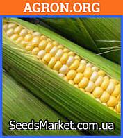 Самит F1 семена кукурудзи суперсолодкої Dorsing Seeds 1 000 г