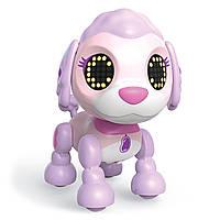 Zoomer Интерактивный щенок пудель джеллибин Zupps Tiny Pups Poodle Jellybean, фото 1