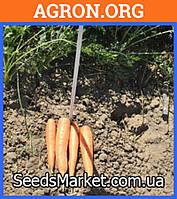 Романс F1 - Семена моркови