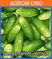 VAL 54 F1 - семена огурцов