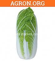 KS 374 F1 - семена пекинской капусты, ранняя