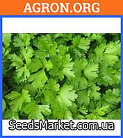 Аргон F1 - семена петрушки