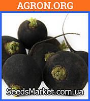 Багира - семена редьки