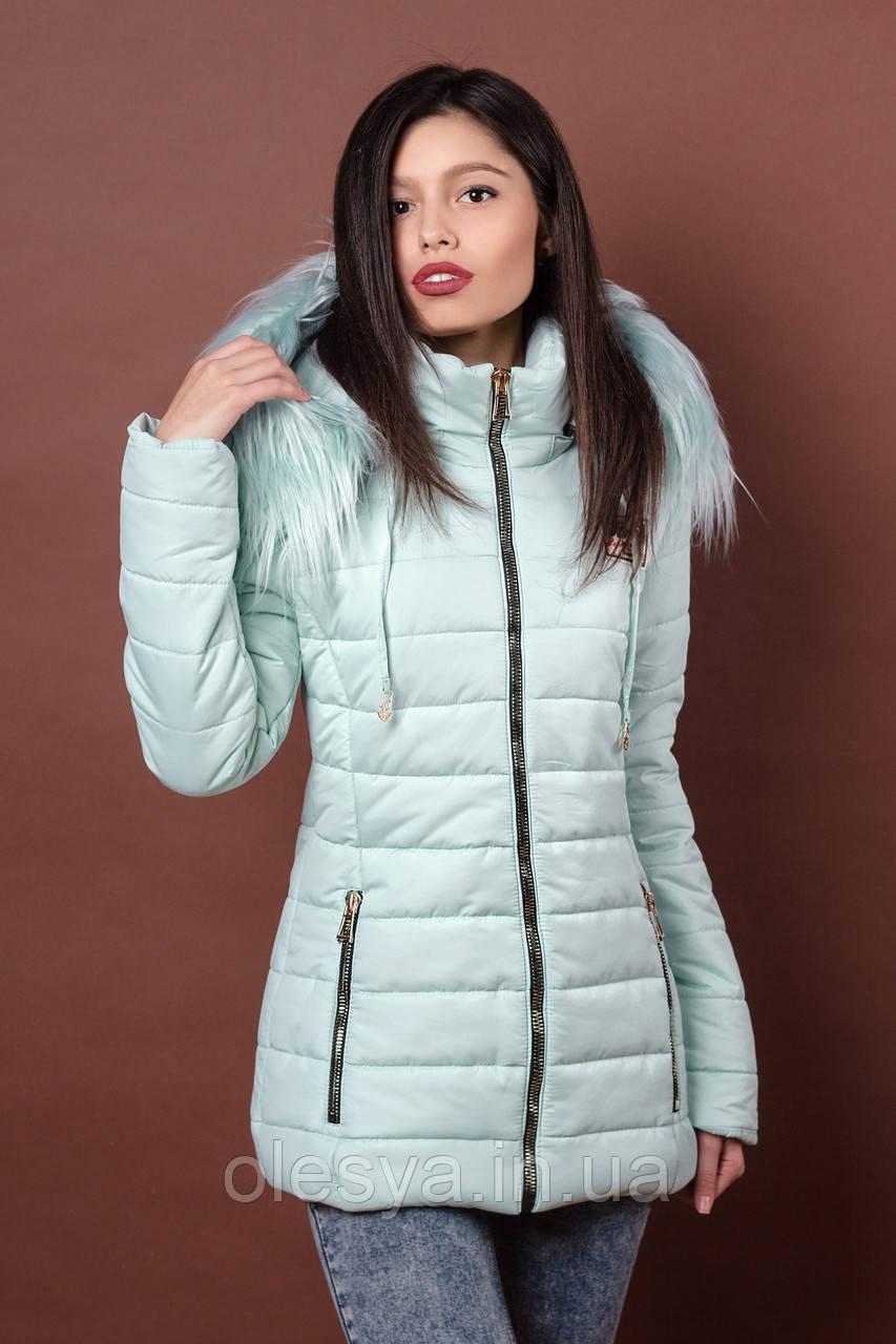 Зимняя женская молодежная куртка. Код К-78-36-17. Цвет мятный.