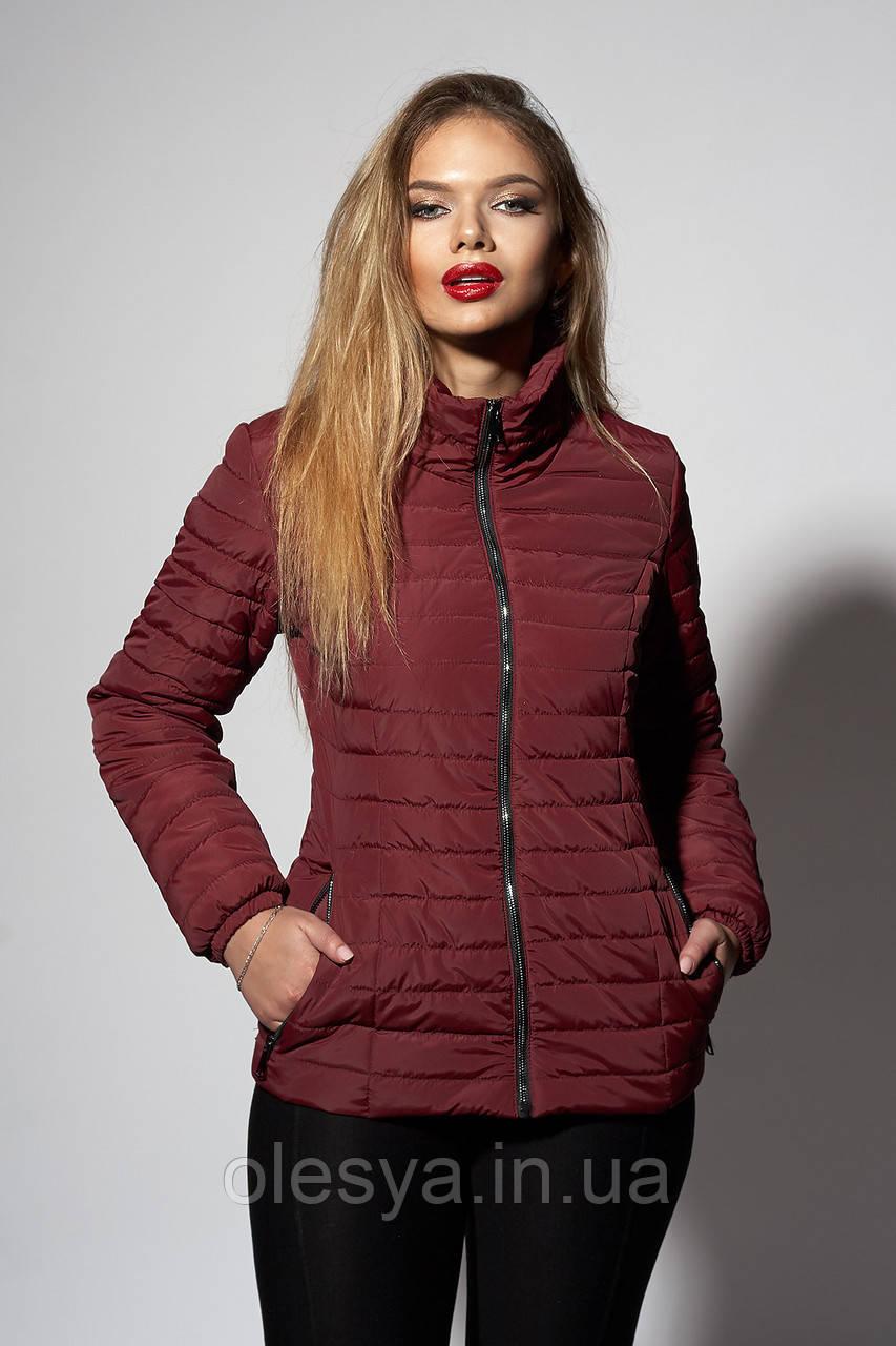 a7676182c48 Женская демисезонная куртка. Размеры 42- 56 Цвет марсала  продажа ...