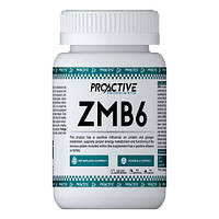 Витамины ProActive ZMB6 ( 90 tab.)