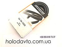 Ремень Thermo King TD-II, RD-II (30 & 50) ; 78-1026