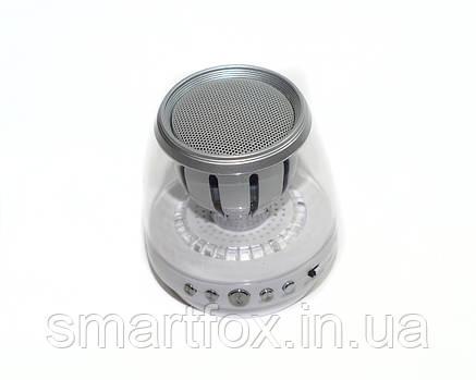 Портативная колонка Bluetooth WSTER WS-K88BT USB, micro SD, FM, фото 2
