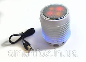 Портативная колонка Bluetooth WSTER WS-1805B USB, micro SD, FM, фото 2