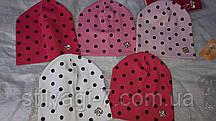 Шапка трикотажная для девочки 2-6 лет красного,розового,молочного цвета в горошек оптом