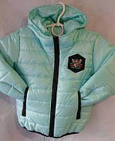 Детская куртка  ветровка оптом 92-116 мята