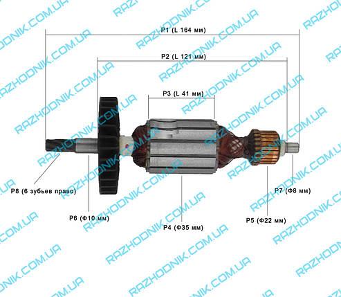 Якорь на перфоратор Forte PLRH 24-8R,Eltos ПЭ-1200 , фото 2