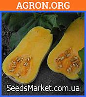 UG 205 F1 - семена тыквы